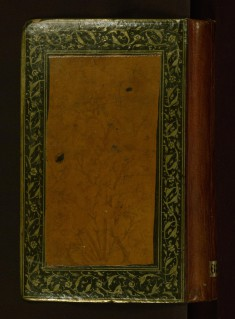 Collection of Poems (Divan)