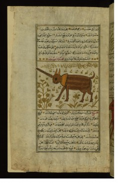 An Animal with One Horn (Name Illegible)