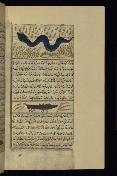 A Large Serpent and a Locust
