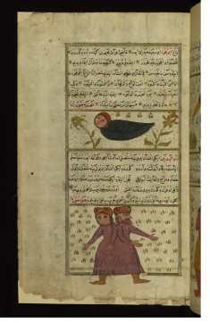 The Creatures Zagh abu 'ujwah (Half-crow, Half-man) and Dhu al-badanayn (Having Two Bodies)
