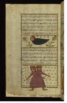 The Creatures Zagh abu 'ujwah (Half-crow, Half-man) and Dhu al-badanayn (Having Two Bodies)