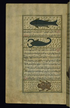 Two Fish Called Sayut and Saqnin and a Frog