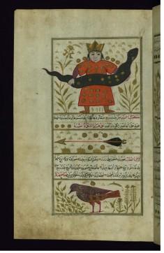 Serpentarius, Sagitta, and Aquila