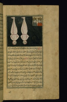 The Angels Harut and Marut Hanging as a Punishment for Being Critical of Adam's Fall