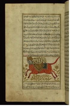 Buraq (the Prophet Muhammad's Horse)