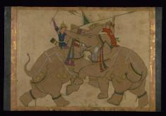 Single Leaf of Elephant Combat