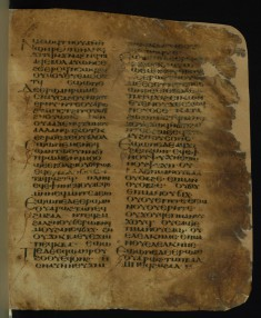 Fragment of the Book of Exodus