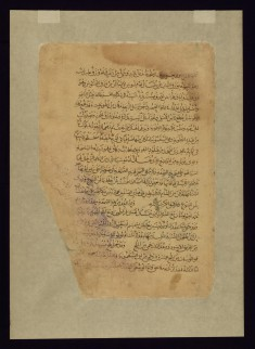 One of Four Leaves from the Arabic Version of Dioscorides' De materia medica