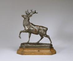 Deer with Foreleg Raised