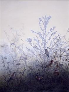 Birds Resting on Bushes