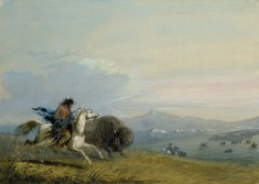Pawnee Running Buffalo
