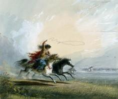 Shoshone Female - Catching A Horse