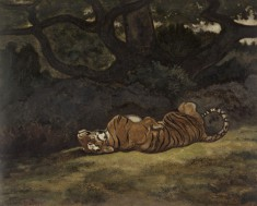Tiger Rolling