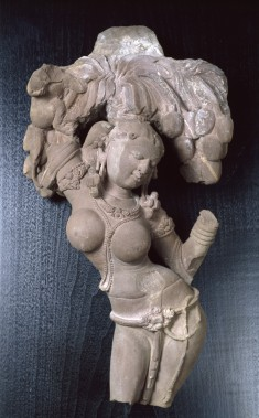 Woman Beneath a Mango Tree