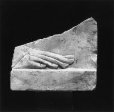 Model of a Human Foot
