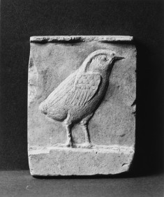Model with a Young Hawk and the Bust of a King