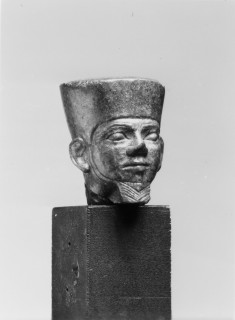 Head of Amun