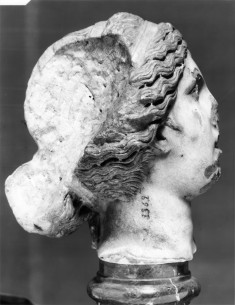 Head of the Knidian Aphrodite Type