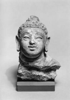 Fragmentary Head of Buddha