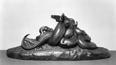 Python Killing a Crocodile