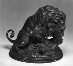 Lion Devouring a Boar