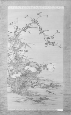 Birds Amid Flowering Plants
