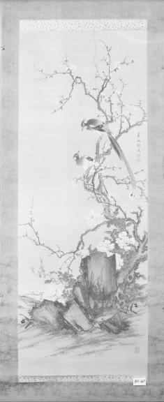 Flycatchers on a Flowering Prunus