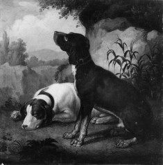 Two Bird Dogs in a Landscape