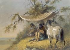 Arapahos