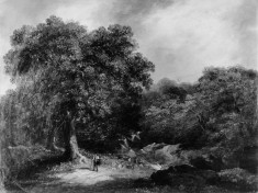 Landscape, the Forest Road