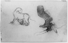 Drawing of a horse and an eagle
