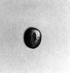 Intaglio with Fish