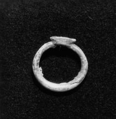 Cartouche Ring