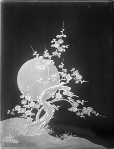 Blossoming plum tree/moon