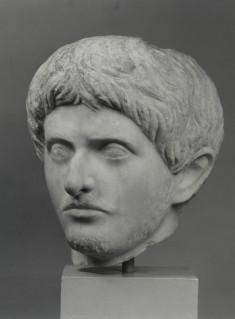 Male Portrait Head