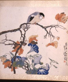 Bird on Maple Branch with Morning Glories