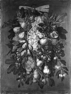 Still Life of Fruits