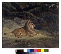 Lion at Rest