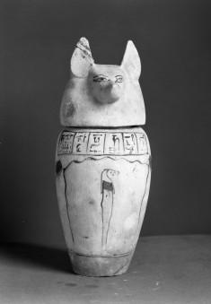 Canopic Jar with Jackal Head