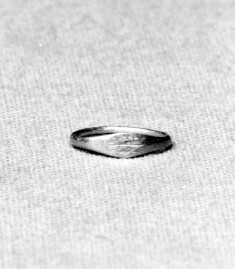 Child's Rings with a Palm Branch