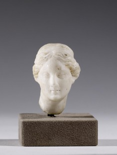 Head of a Maiden