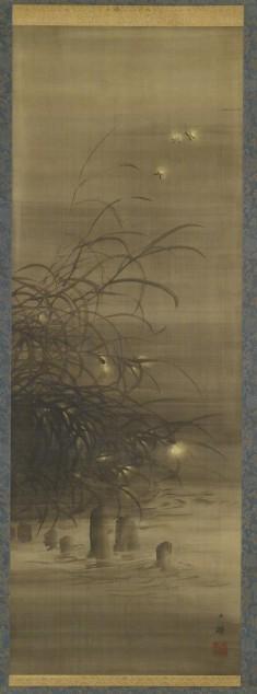 Fireflies Among Reeds