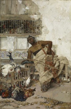 Poultry Market, Tangiers