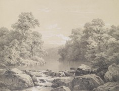 River And Forest Scene
