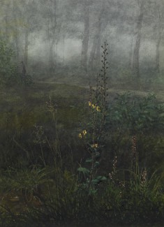 Woodland Scene with Floral Foreground