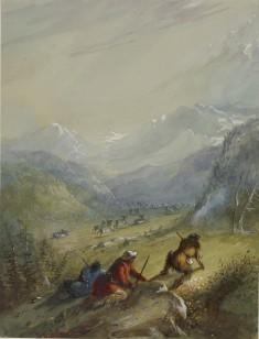 The Argali - Mountain Sheep