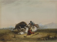 Pierre and the Buffalo