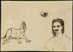 A Horse and a Woman