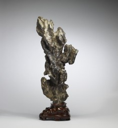 Ornamental Rock