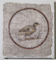 Floor Mosaic with Partridge